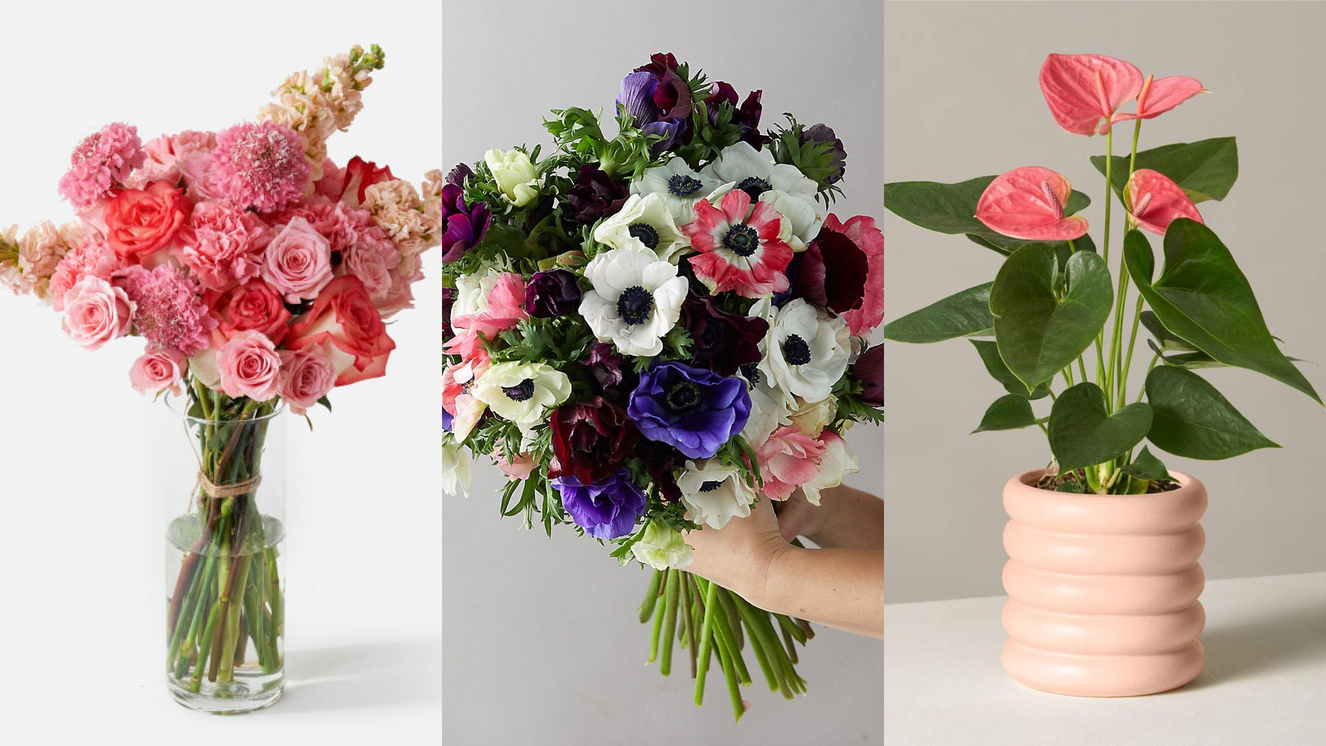 Tips And Tricks To Find Out The Cheapest Flower Shop